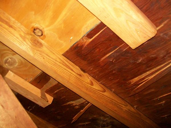 Delaminating FRT Plywood